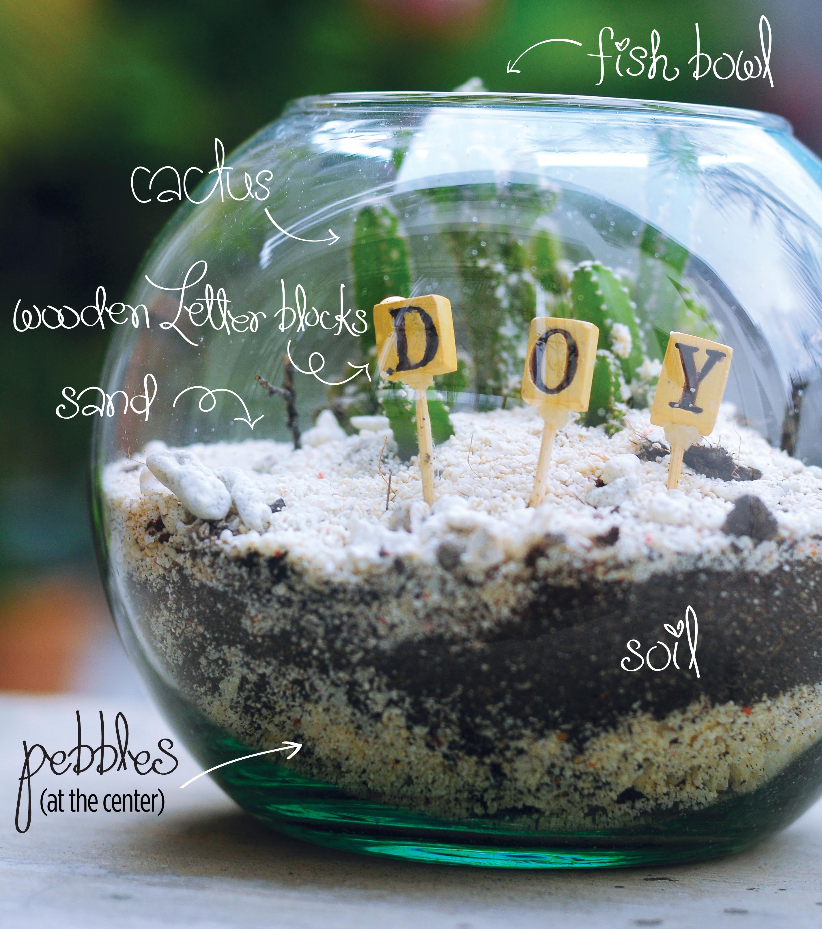 Cactus Terrarium Kriscel Diane Go