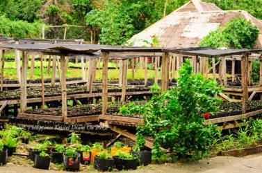Kriscel Go 2012 Bohol-64