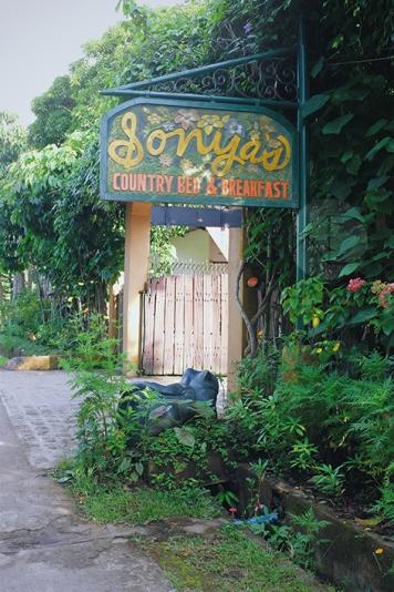 Sonya's Garden20