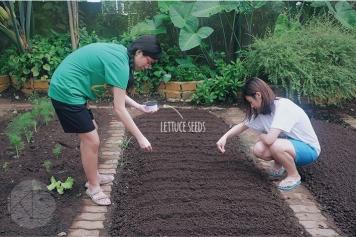 Sonya's Garden25